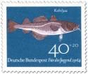 Fisch: Kabeljau (Gadus Morhua)