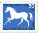 Vollblut Pferd (Weiss)