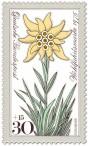 Briefmarke: Edelweiß (Blume)