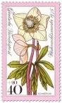 Briefmarke: Schneerose / Christrose (Weihnachtsmarke 1975)