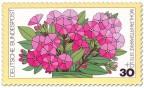 Briefmarke: Blume: rosa Phlox