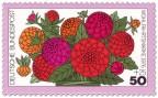 Briefmarke: Blume: rote Zinnien
