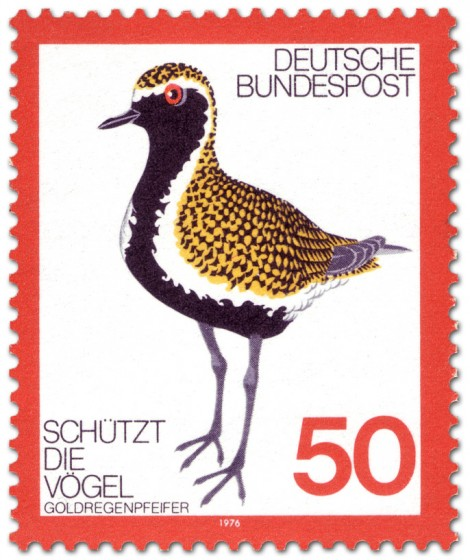 Briefmarke: Goldregenpfeifer (Vogel)