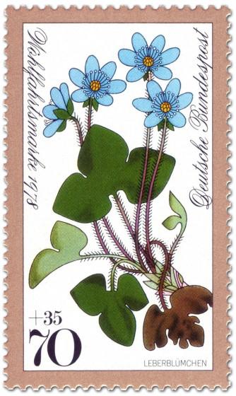 Briefmarke: Leberblümchen (Waldblume)