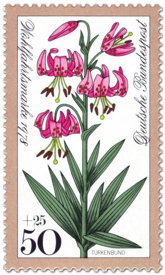 Briefmarke: Türkenbund (Waldblume)