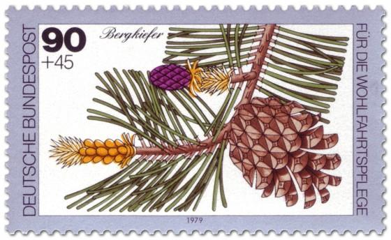 Briefmarke: Bergkiefer Frucht und Zapfen