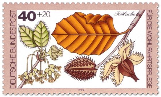 Briefmarke: Rotbuche Blatt und Frucht