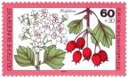 Briefmarke: Weissdorn Blatt und Frucht