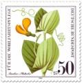 Briefmarke: Ranken-Platterbse (Wildkraut)
