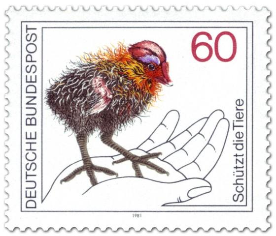 Briefmarke: Blässhuhn Küken auf einer Hand (Naturschutz)