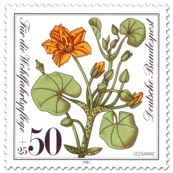 Briefmarke: Seekanne (Pflanze)