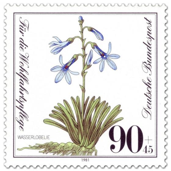 Briefmarke: Wasserlobelie Pflanze