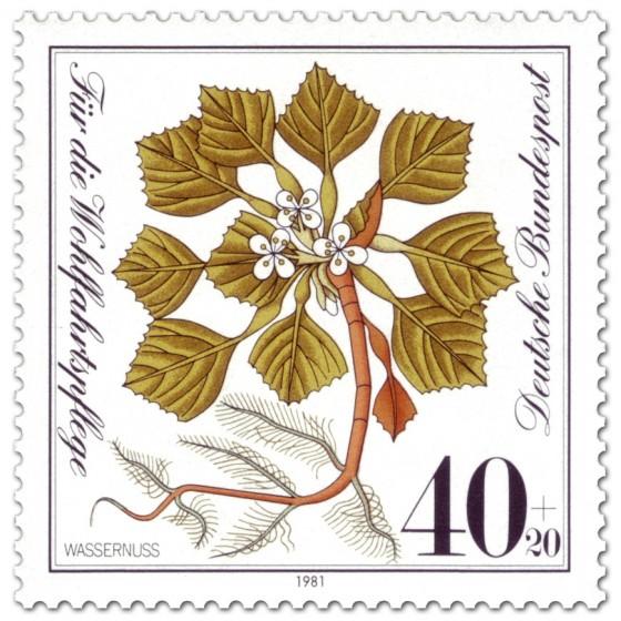 Briefmarke: Wassernuss (Pflanze)