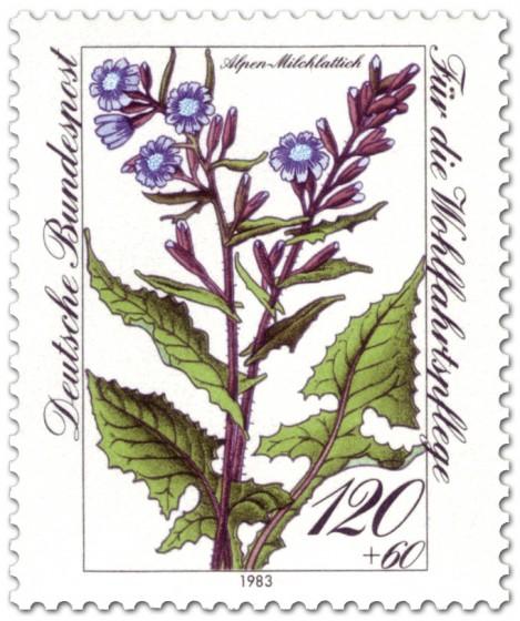Briefmarke: Alpen Milchlattich