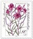 Briefmarke: Fleischers Weidenröschen