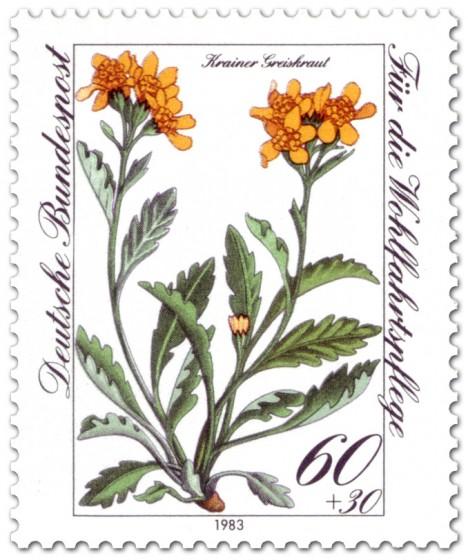Briefmarke: Kreiner Greiskraut