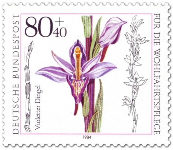 Briefmarke: Violetter Dingel Orchidee