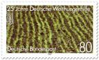 Reisfeld - Deutsche Welthungerhilfe