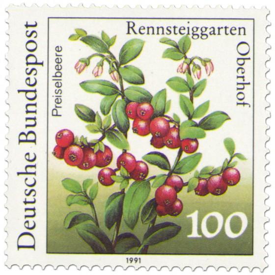 Briefmarke: Preiselbeeren (Vaccinium vitis-idaea)