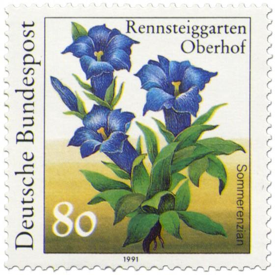 Briefmarke: Sommerenzian