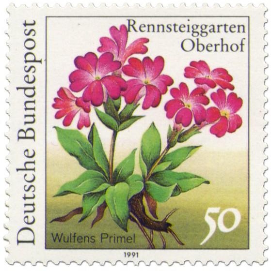 Briefmarke: Wulfens Primel